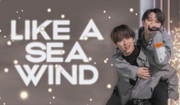 like a sea wind