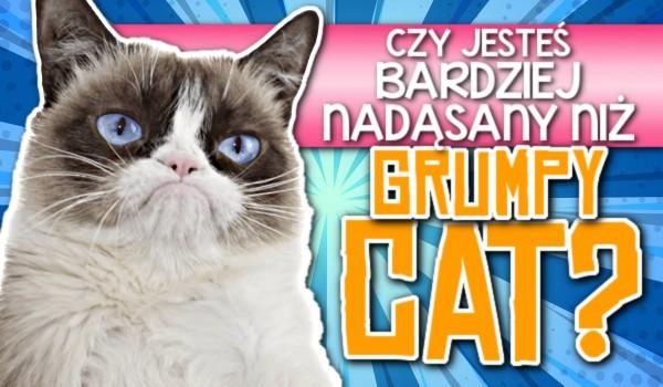 Czy jesteś bardziej nadąsany niż Grumpy Cat?