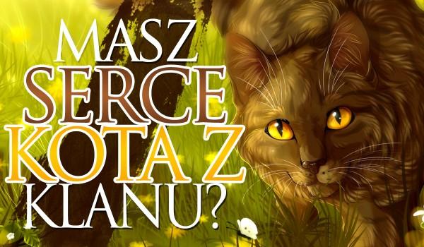 Czy masz serce kota z klanu?