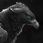 Golden_Raven