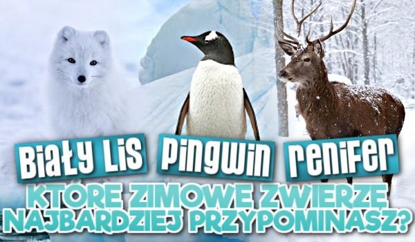 Renifer, biały lis czy pingwin – które zimowe zwierzę najbardziej przypominasz?