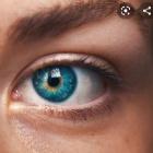 niebieskoka