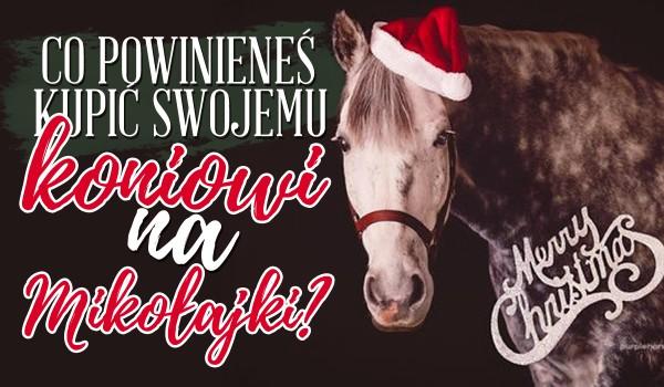Co powinieneś kupić swojemu koniowi na Mikołajki?