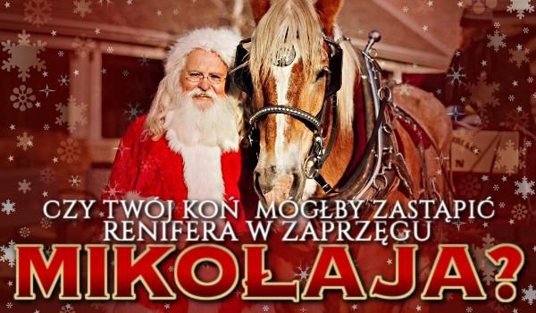 Czy Twój koń mógłby zastąpić renifera w zaprzęgu Św. Mikołaja?