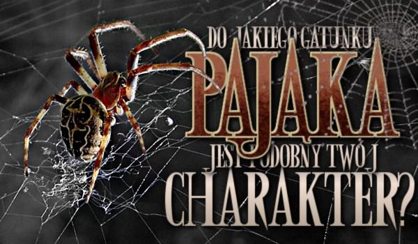 Do jakiego gatunku pająka jest podobny Twój charakter?