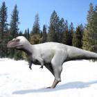 Giganotozaurr