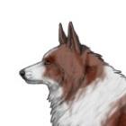 Doggi_Game