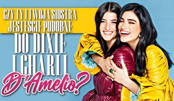 Czy Ty i Twoja siostra jesteście podobne do Dixie i Charli D'amelio?