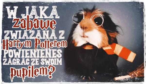 """W jaką zabawę związaną z ,,Harrym Potterem"""" powinieneś zagrać ze swoim pupilem?"""