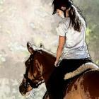 Domi_Horse