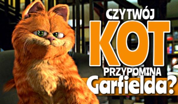 Czy Twój kot przypomina Garfielda?