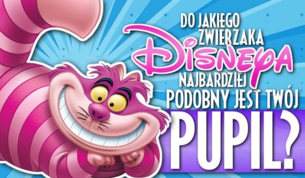 Do którego zwierzaka z Disneya najbardziej podobny jest Twój pupil?
