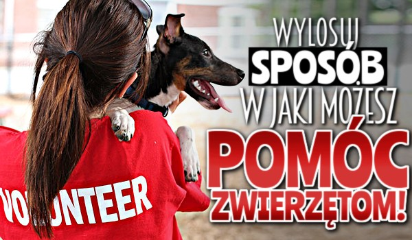 Wylosuj sposób, w jaki możesz pomóc zwierzętom!