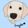 Frajda2019