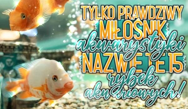 Tylko prawdziwy miłośnik akwarystyki nazwie te 15 nazw rybek akwariowych!
