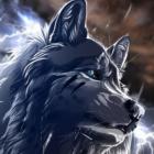 wolfiesss