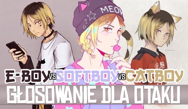 E-boy vs SoftBoy vs Catboy – Głosowanie dla otaku!