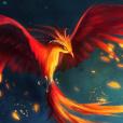 Phoenix_947