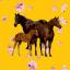 Dipsy.Horse