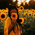 _mrs.sunflower_