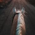 Eveline.Horse