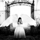 .Lea_The_Angel.