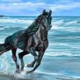 aixi_horse
