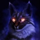 Luna.Cat
