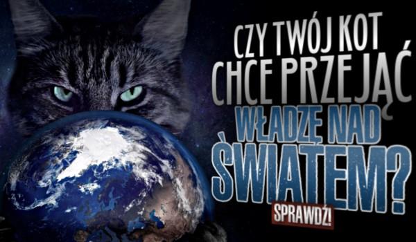 Czy Twój kot chce przejąć władzę nad światem?