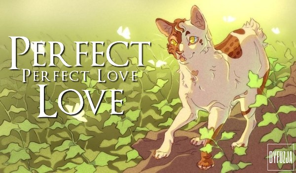 Perfect Love – One Shot