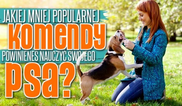 Jakiej mniej znanej komendy powinieneś nauczyć swojego psa?