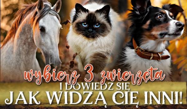 Wybierz 3 zwierzęta i dowiedz się, jak widzą Cię inni!
