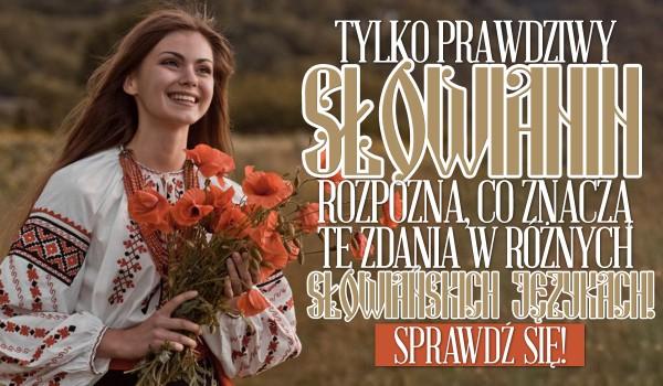 Tylko najprawdziwszy Słowianin rozpozna, co znaczą te zdania w różnych słowiańskich językach!