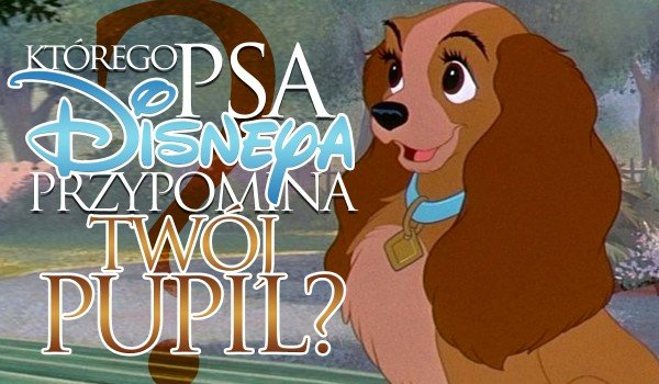 Którego psa Disneya przypomina Twój pupil?