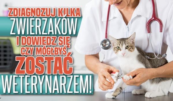 Zdiagnozuj kilka zwierzaków i dowiedz się, czy mógłbyś zostać weterynarzem!