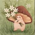 Mushroom_Kid