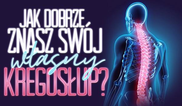 Jak dobrze znasz swój własny kręgosłup?