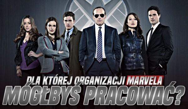 Dla której organizacji Marvela mógłbyś pracować?