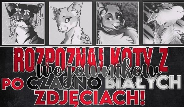 Rozpoznaj koty z Wojowników po czarno białych zdjęciach!