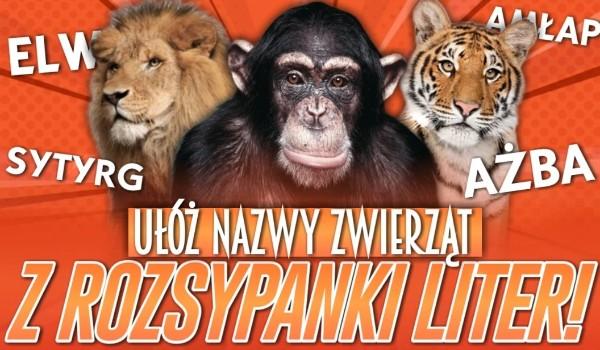 Spróbuj ułożyć nazwy zwierząt z rozsypanki liter!