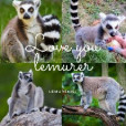 Lemurek_154