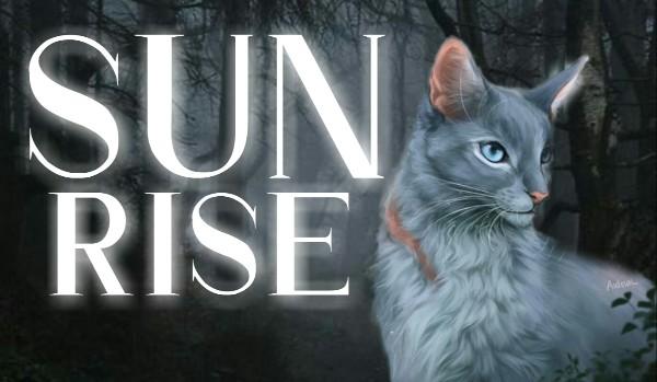 Sunrise • Rozdział I • Propozycja i nowy klan
