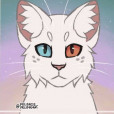 dragon_cat515