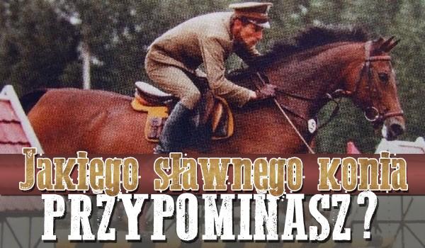 Jakiego słynnego konia przypominasz?