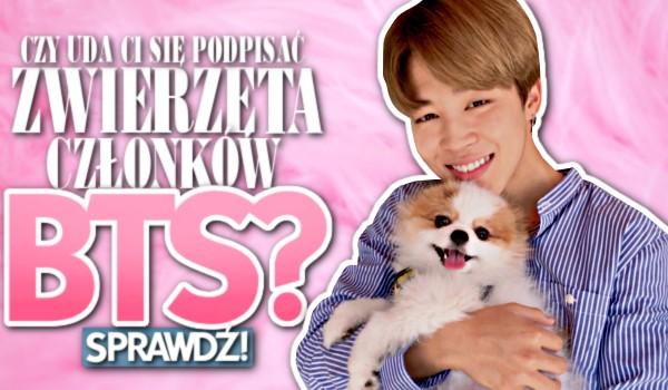Czy uda Ci się podpisać zwierzęta członków BTS?