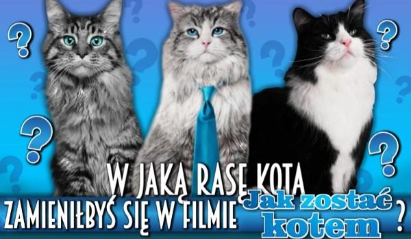 """W jaką rasę kota zamieniłbyś się w filmie """"Jak zostać kotem?"""""""