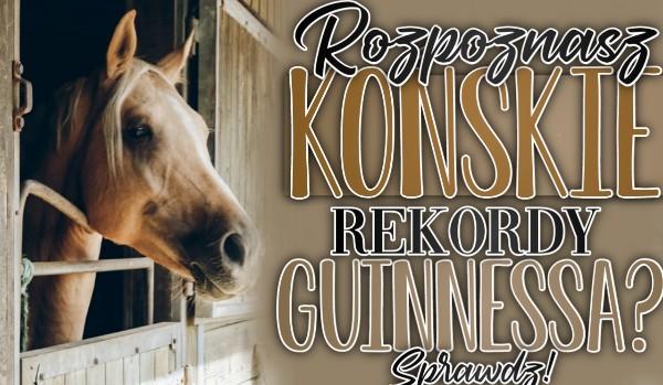 Rozpoznasz końskie rekordy Guinnessa?